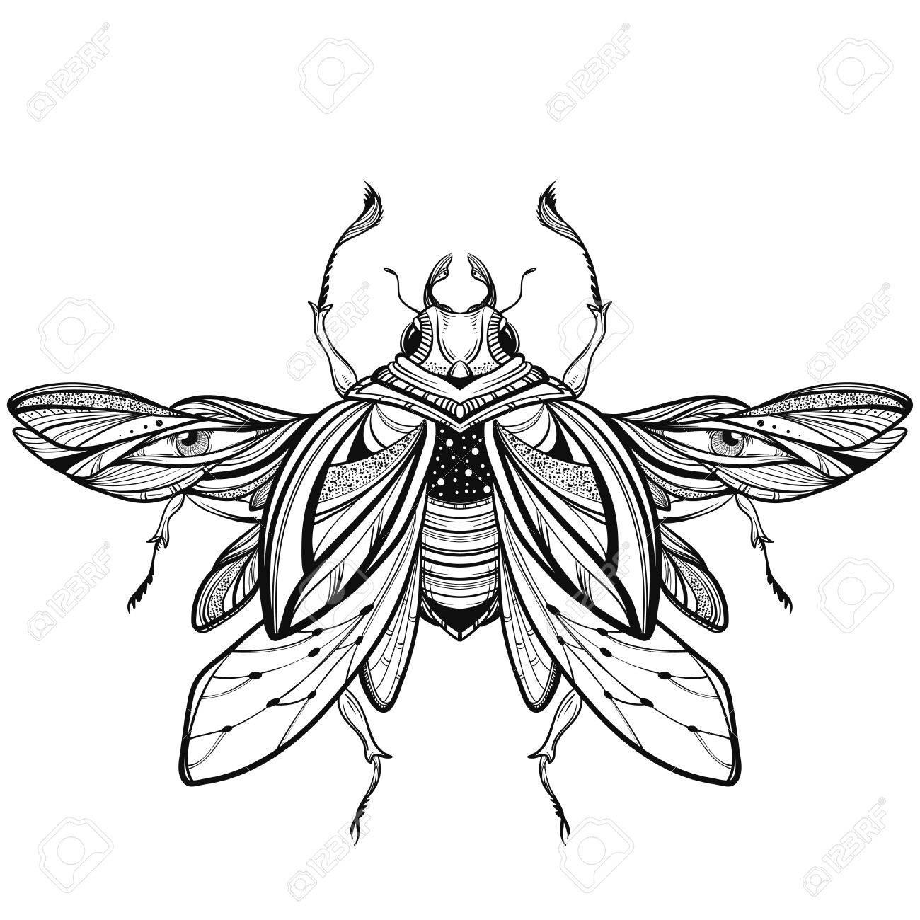 Egyptian Scarab Beetle Drawing At Getdrawings