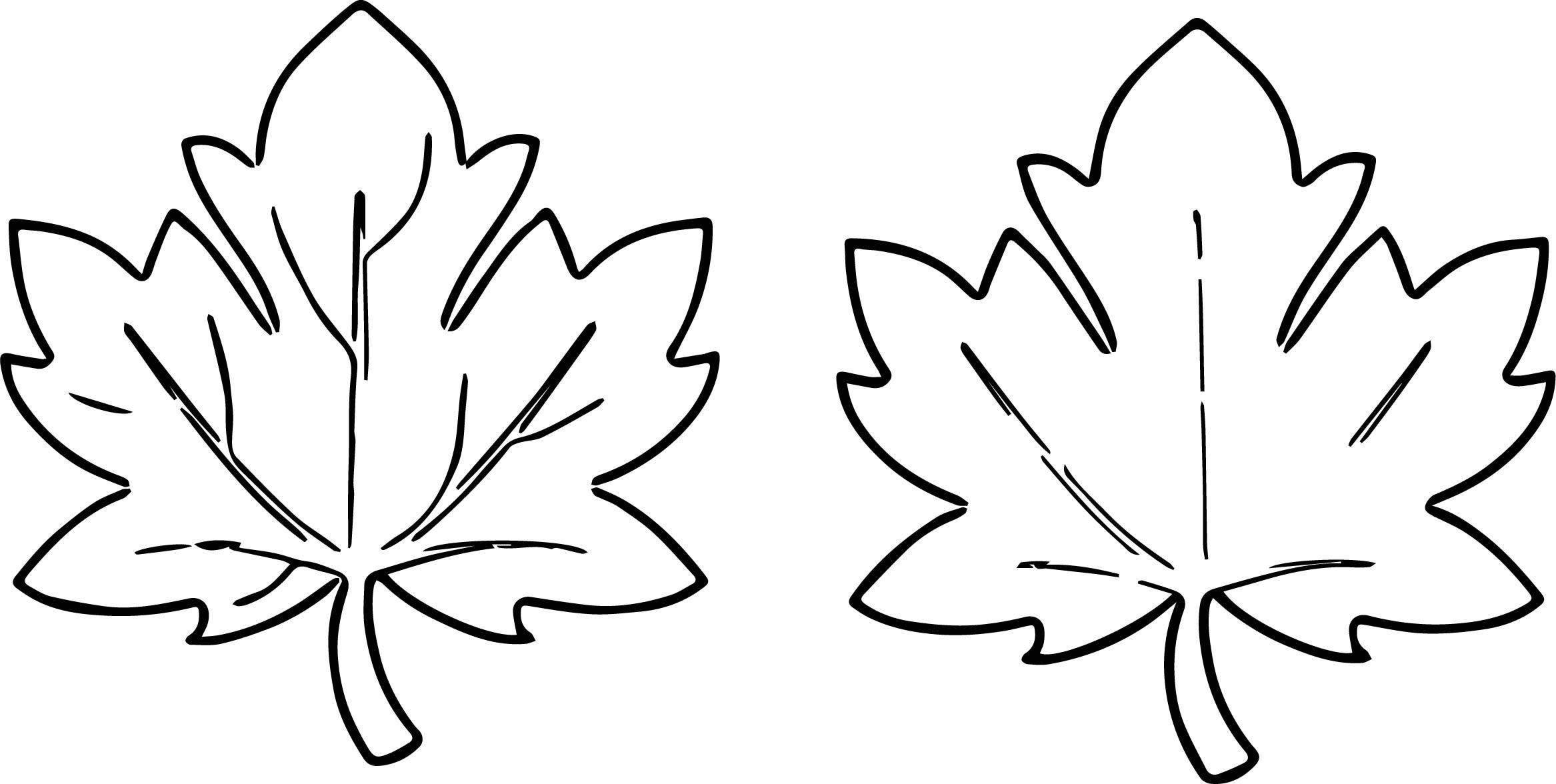 Falling Rose Petals Drawing At Getdrawings