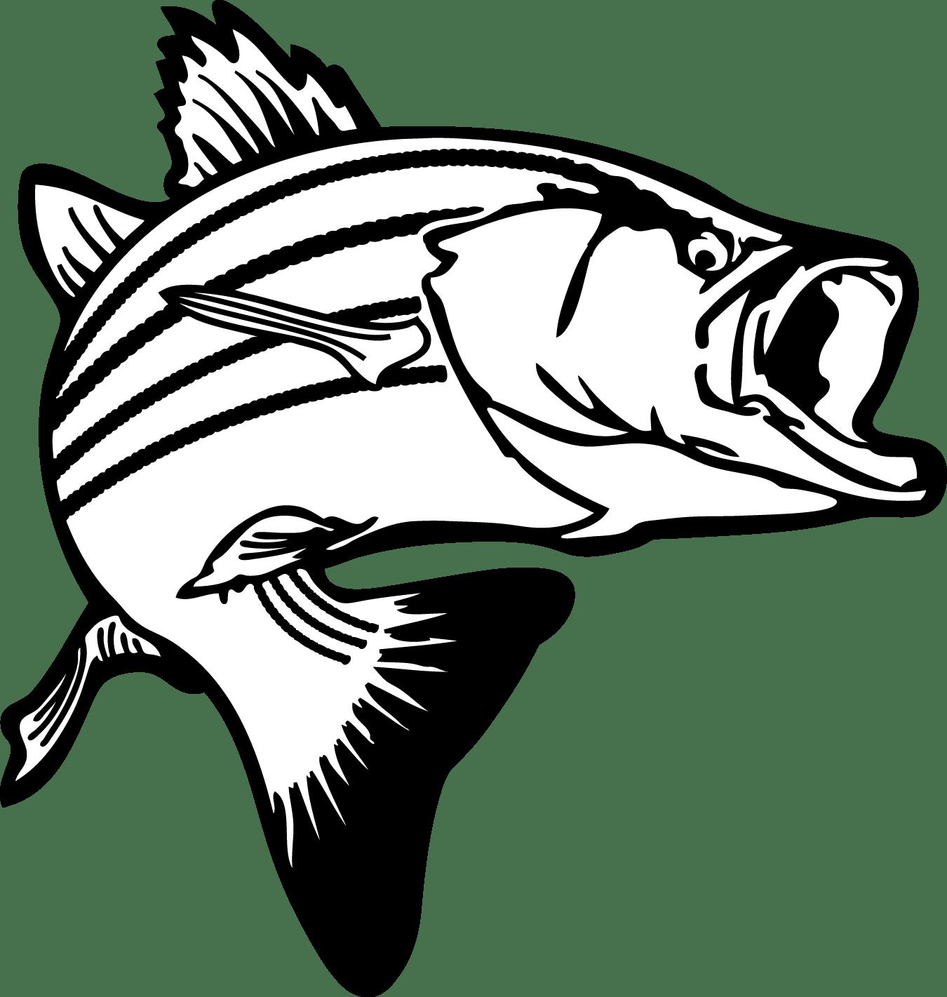 Fish Black And White Drawing At Getdrawings