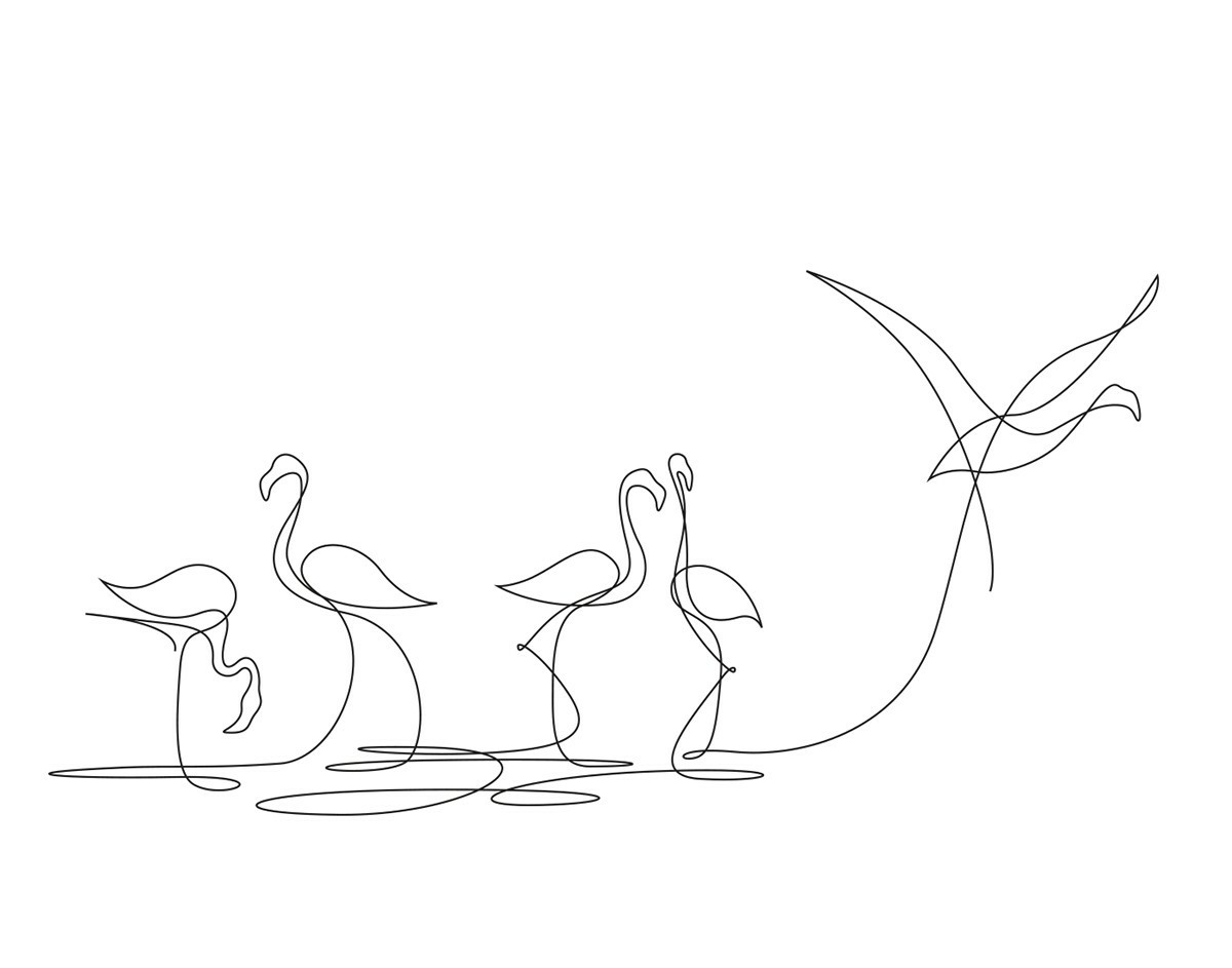 Flamingo Drawing Outline At Getdrawings