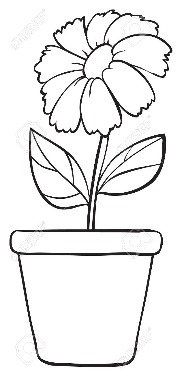 Flowers Pot Drawing Images Wajiflower Co