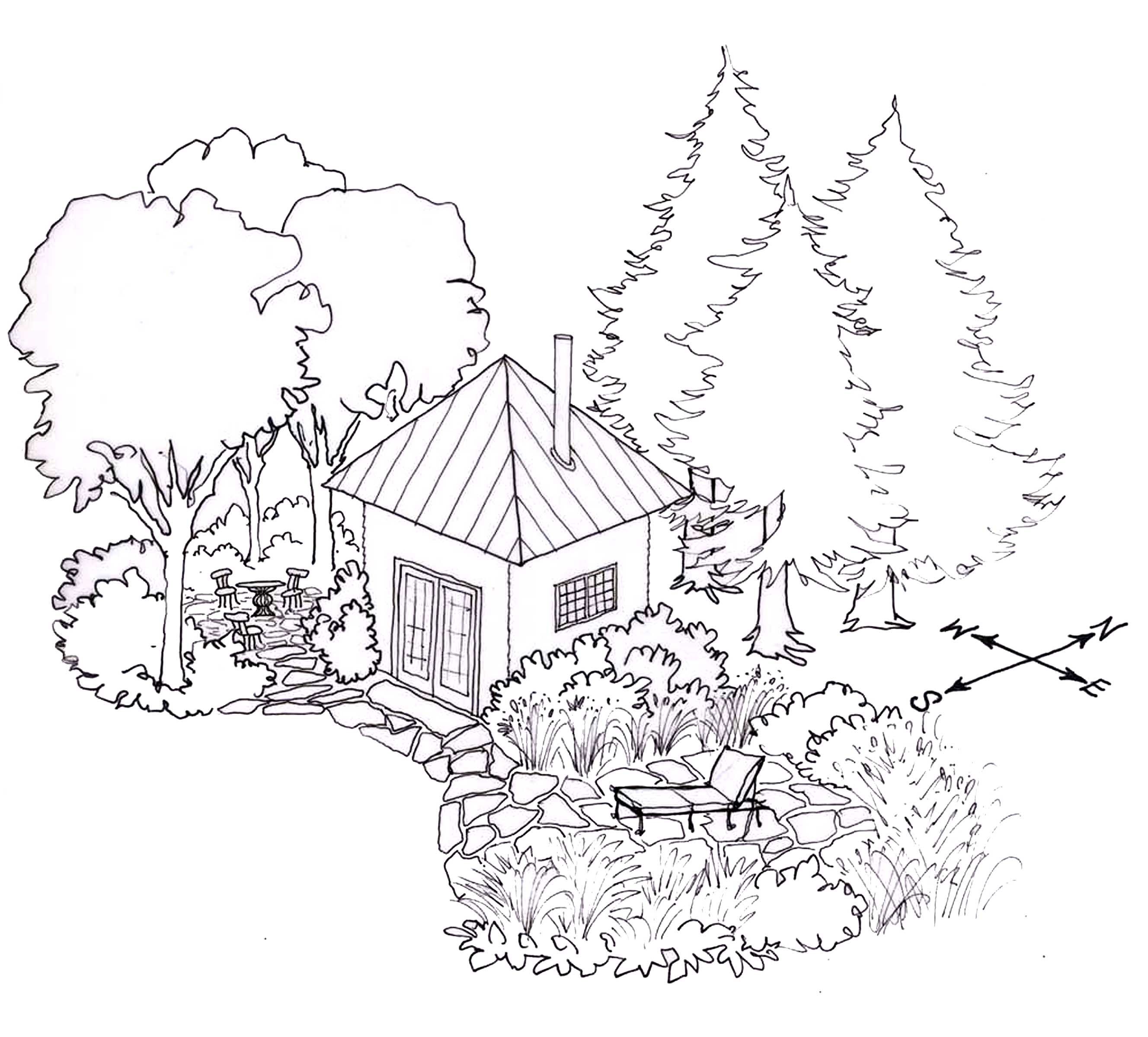 Forest Habitat Drawing At Getdrawings