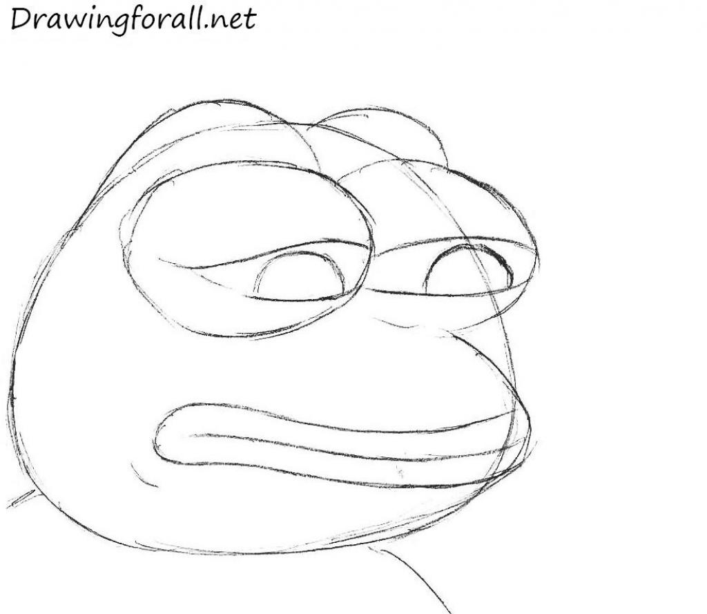 Frog Face Drawing At Getdrawings