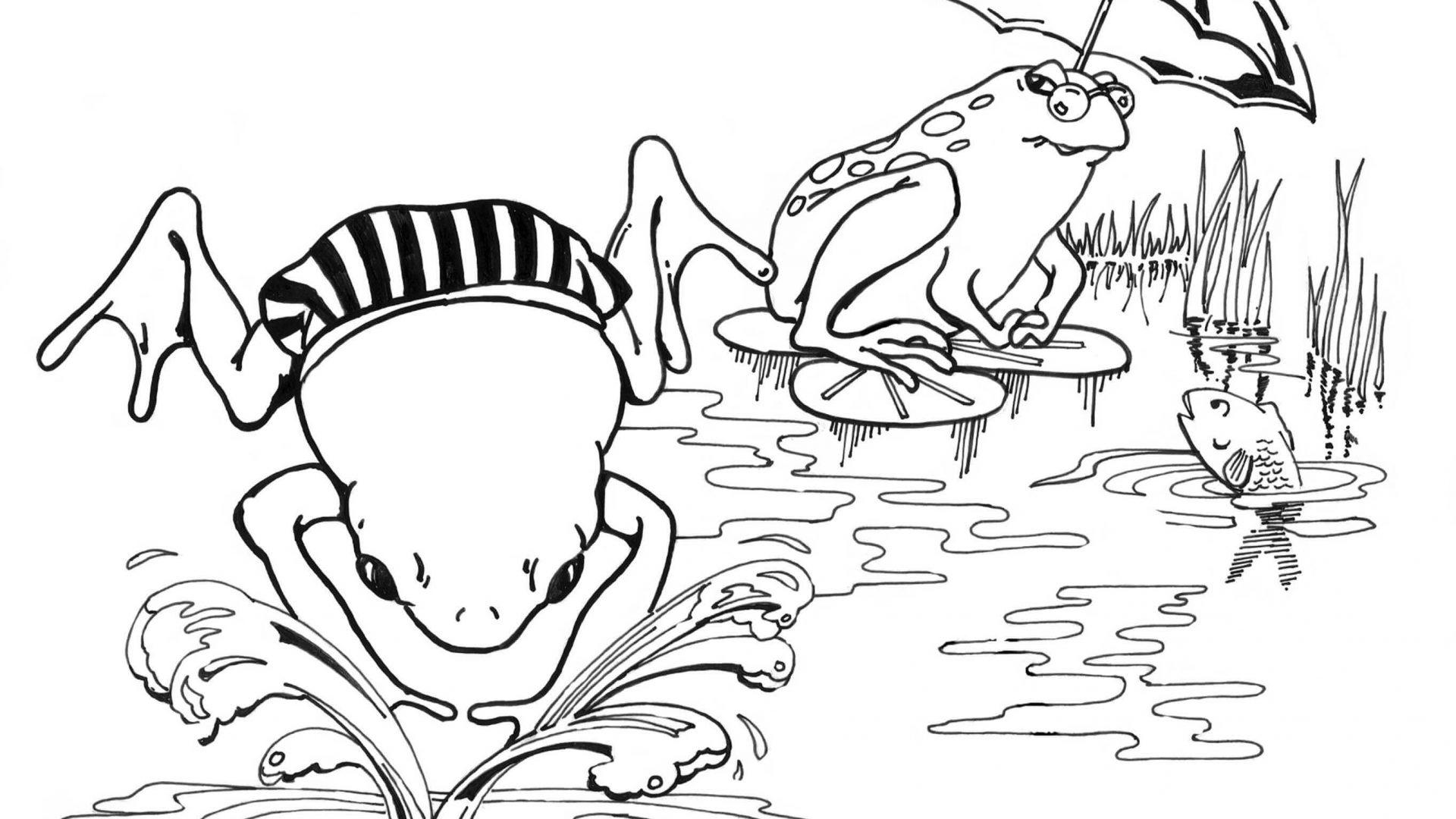 Frog Life Cycle Drawing At Getdrawings