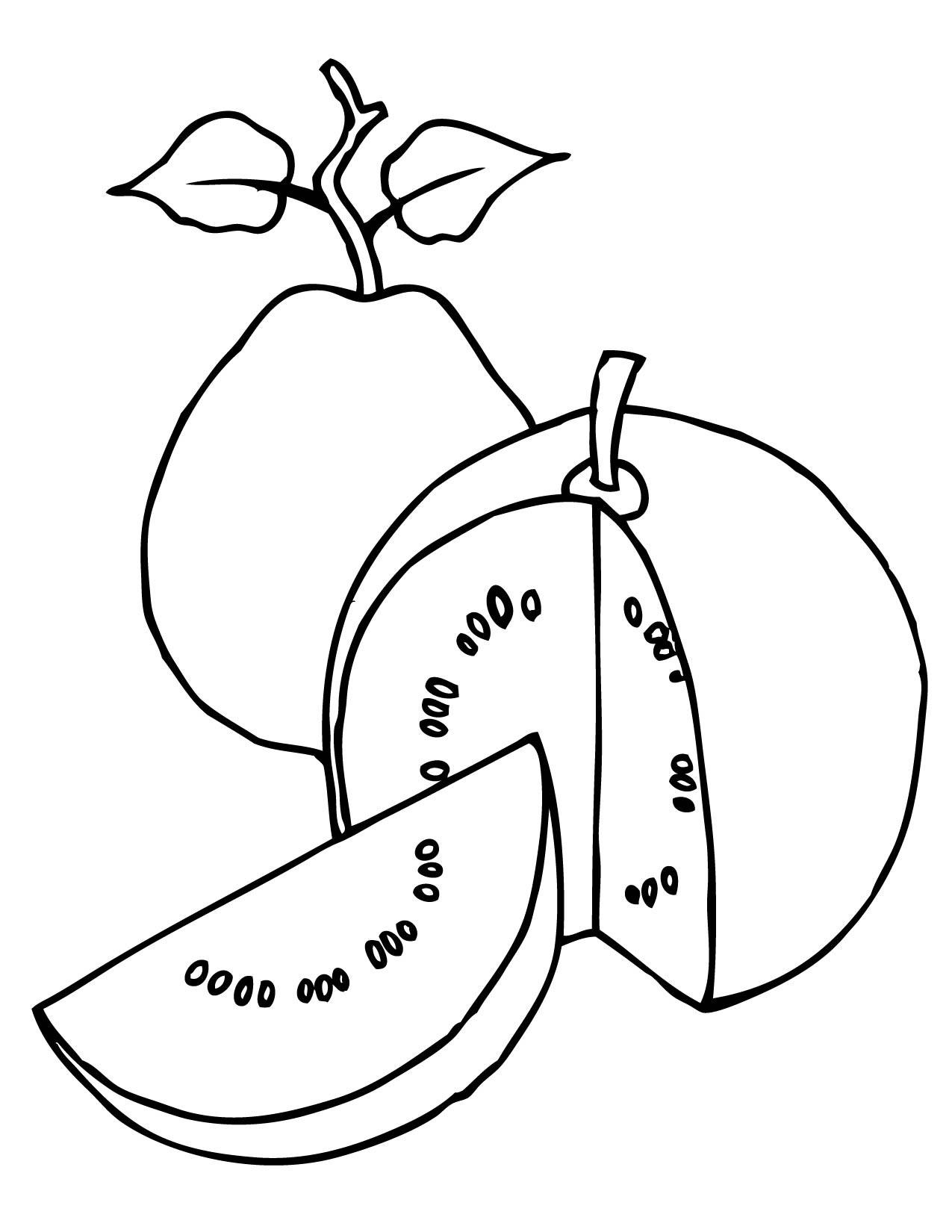 Guava Drawing At Getdrawings