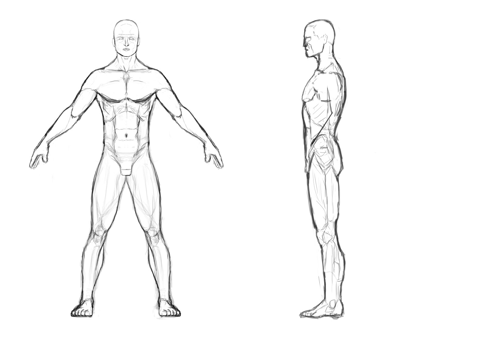 Human Body Outline Drawing At Getdrawings