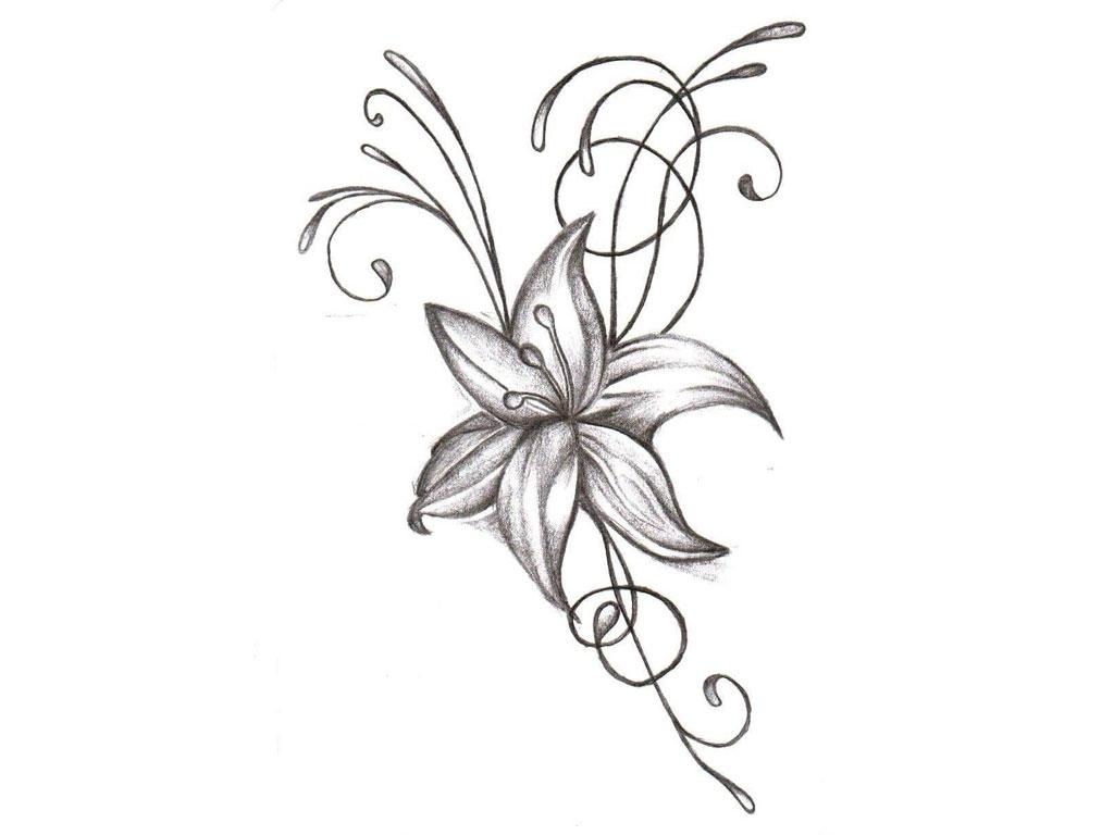 Jasmine Drawing Flower At Getdrawings