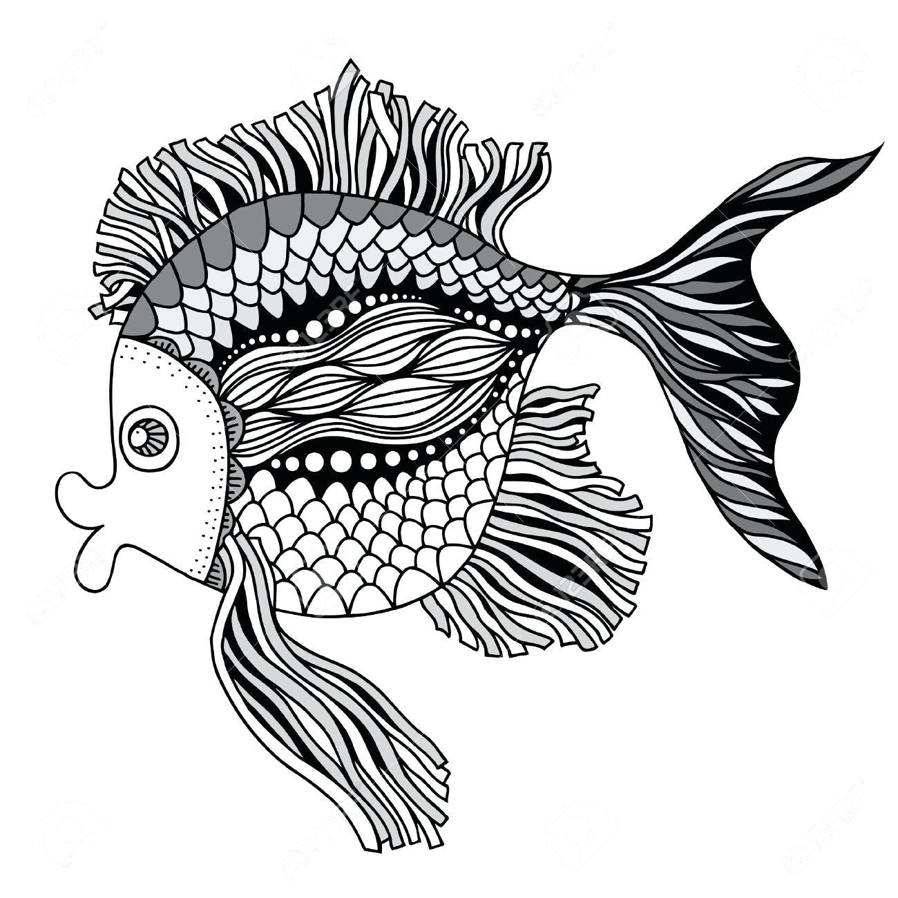 Koi Fish Drawing Outline At Getdrawings