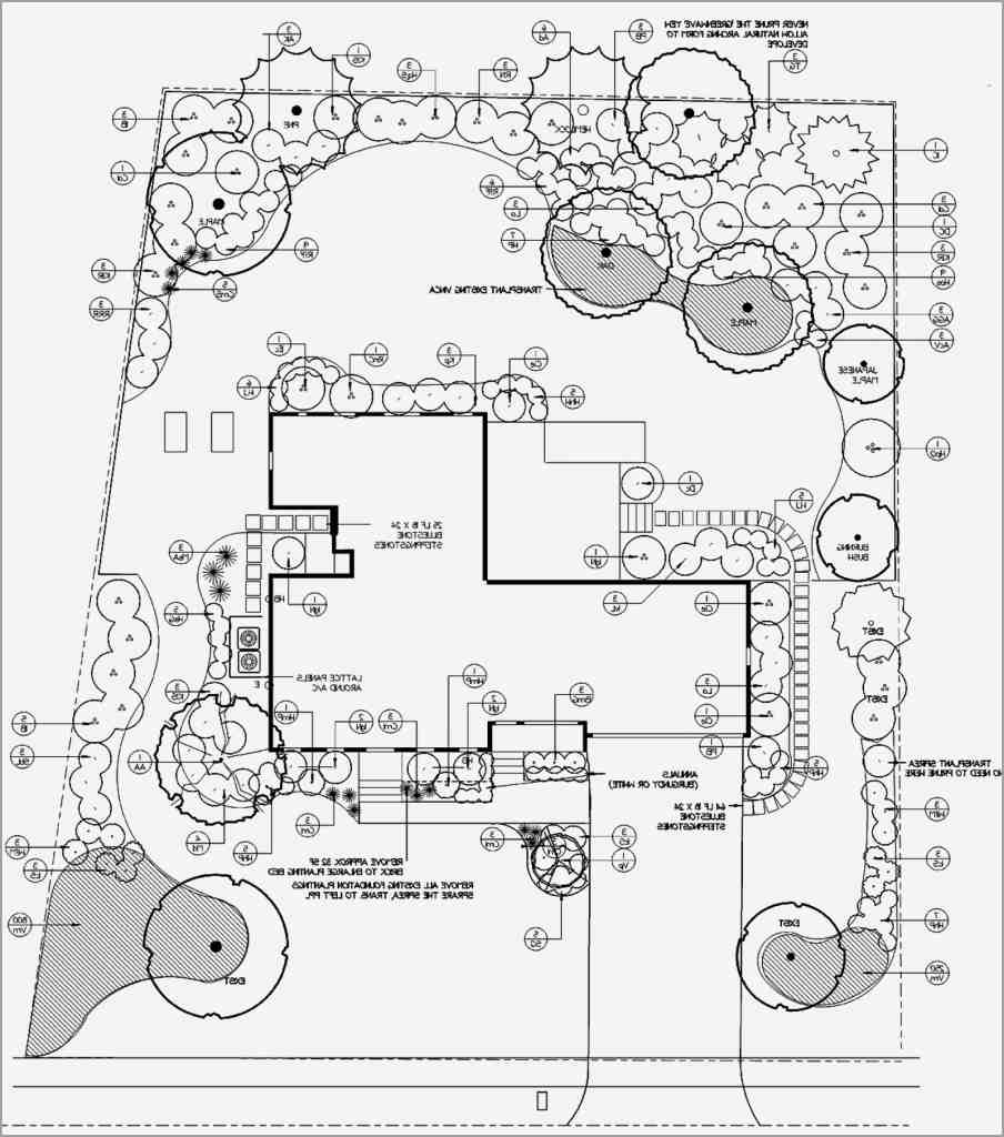 904x1024 landscape plan drawing clean landscape design drawing tools for of