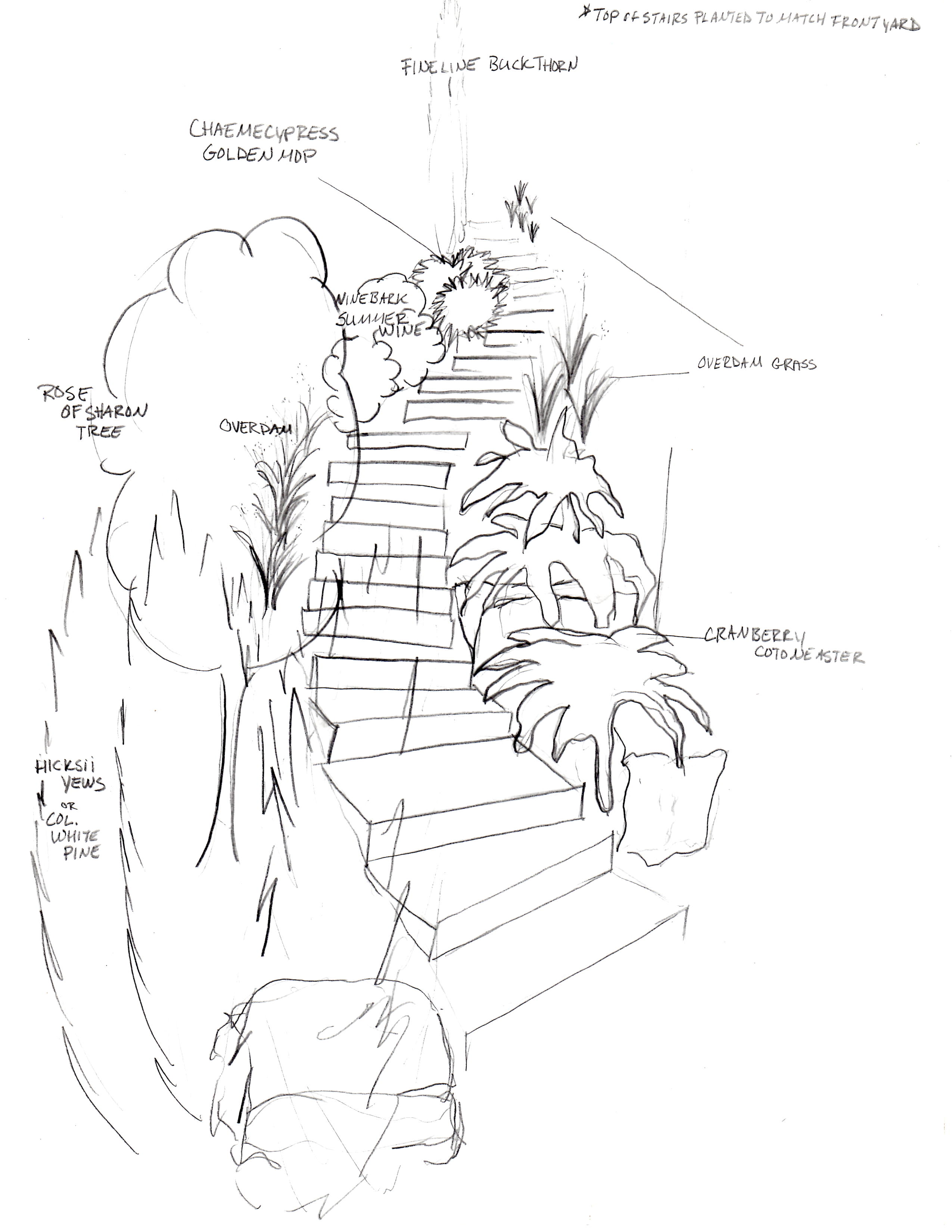Landscape design drawing at getdrawings free for personal use