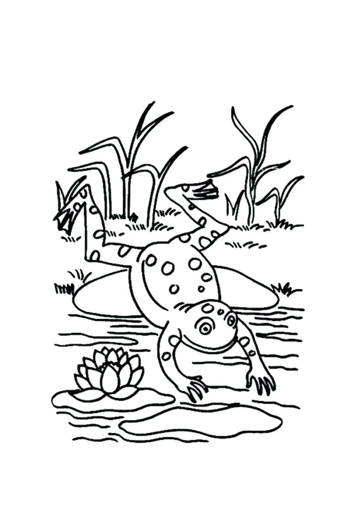 List of Leap Frog Coloring Book Pict - Best Pictures