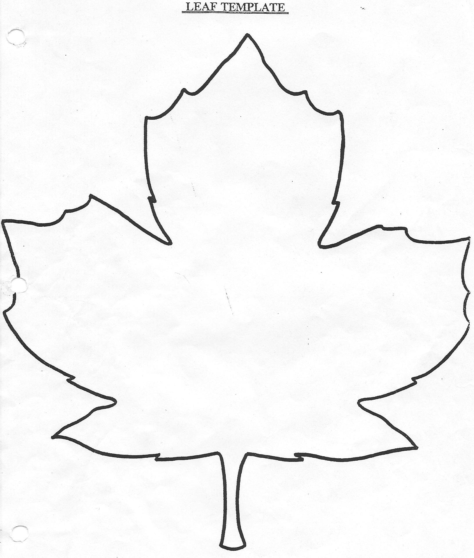Line Drawing Of Leaves At Getdrawings