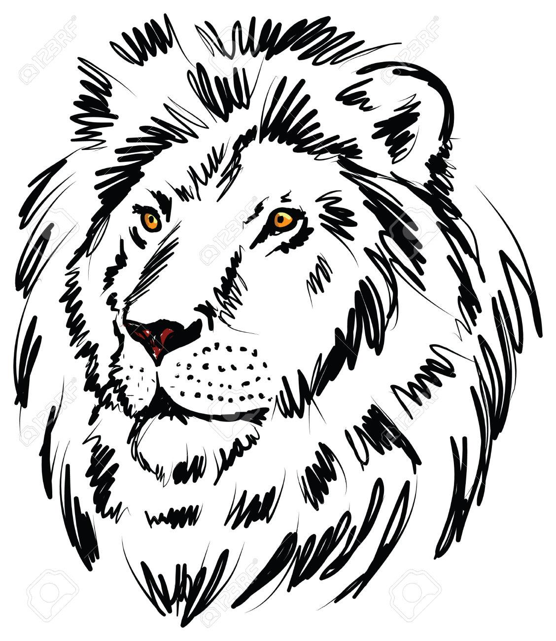 Lion Head Drawing At Getdrawings