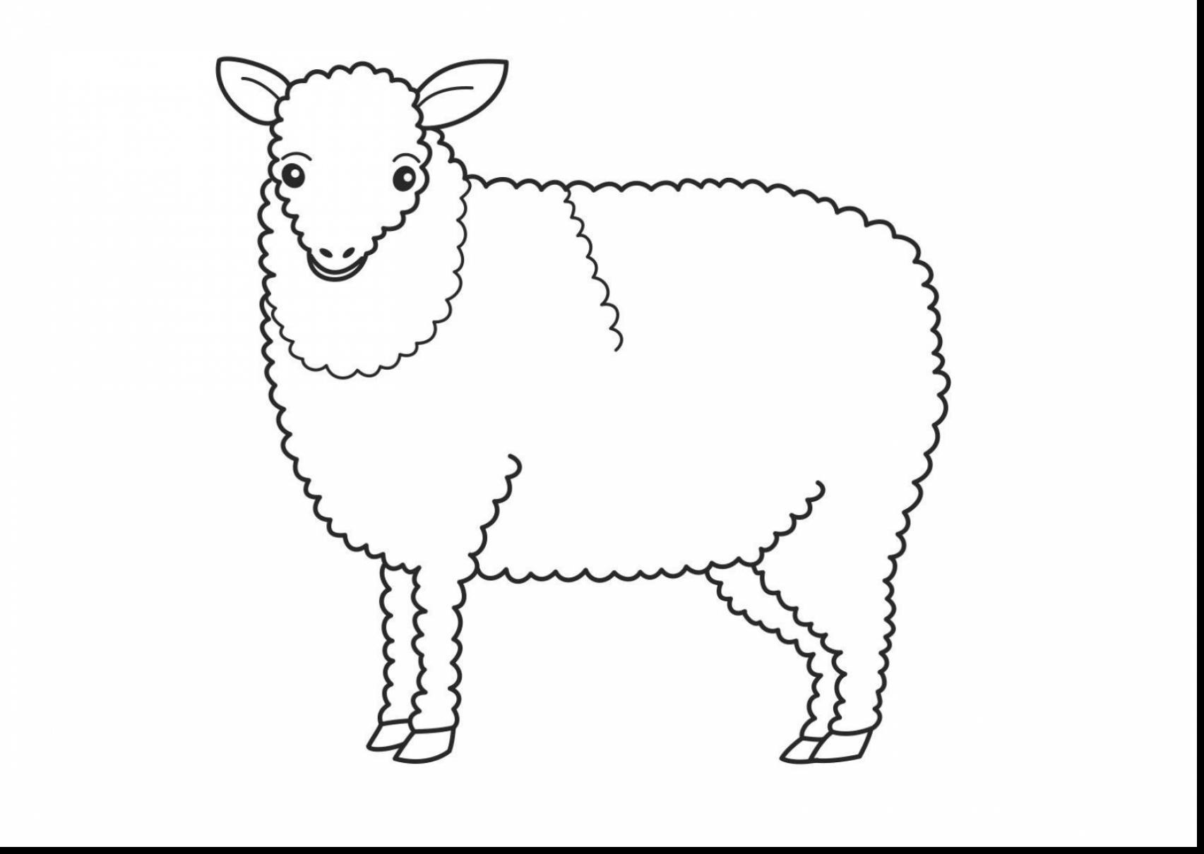 Lion Lamb Drawing At Getdrawings