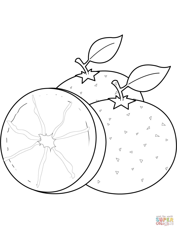 Mandarin Orange Drawing At Getdrawings