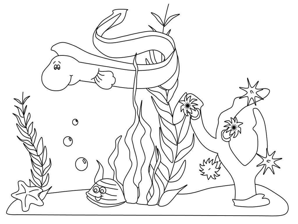 Marine Ecosystem Drawing At Getdrawings