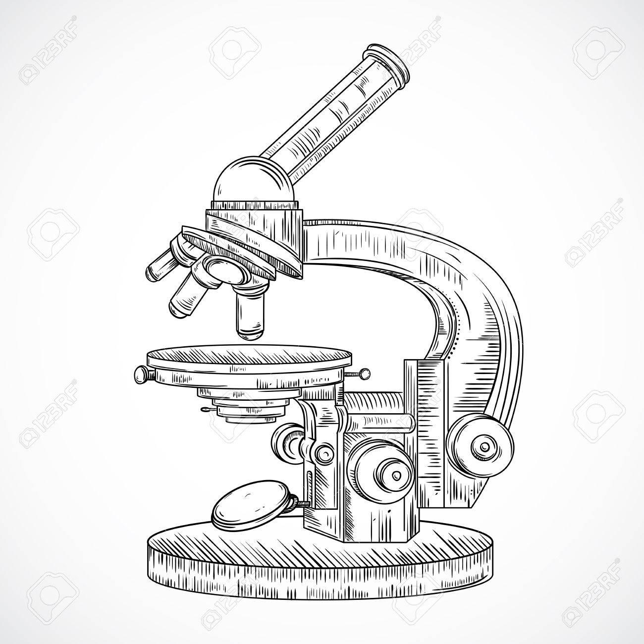 Microscope Drawing At Getdrawings