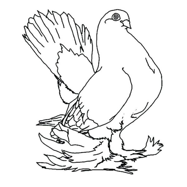 mo willems coloring pages # 84