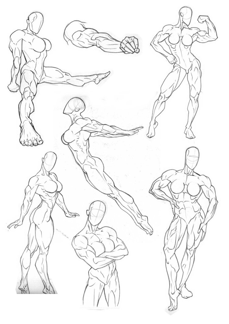 Muscle Arms Drawing at GetDrawings | Free download