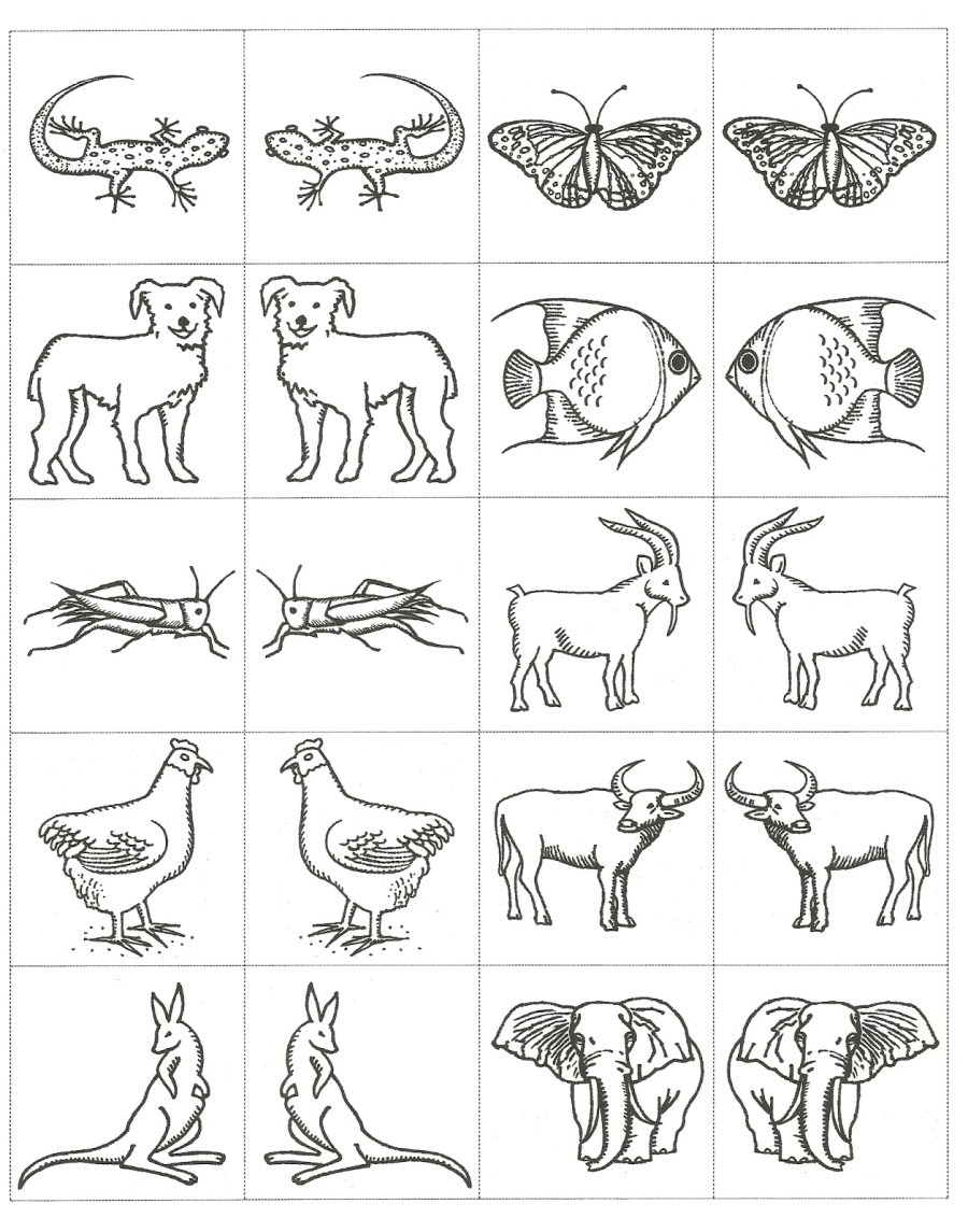 Noahs Ark Drawing at GetDrawings   Free download