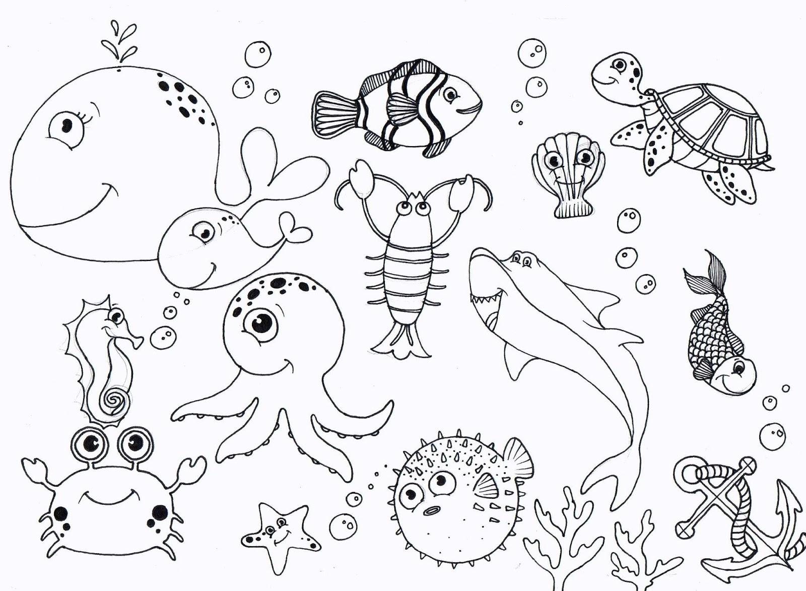 Pacific Ocean Worksheet For Preschool