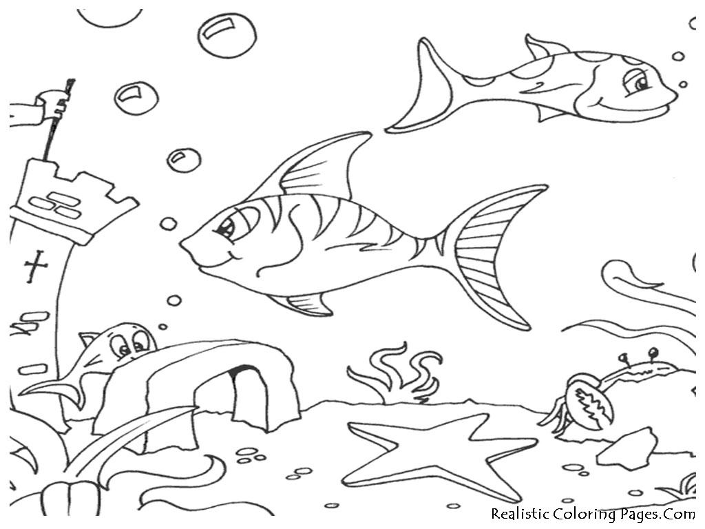Ocean Floor Drawing At Getdrawings