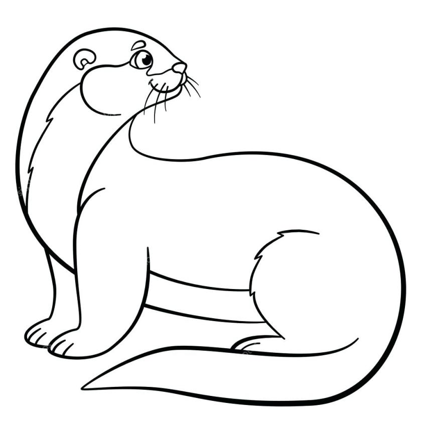 otter line drawing at getdrawings  free download