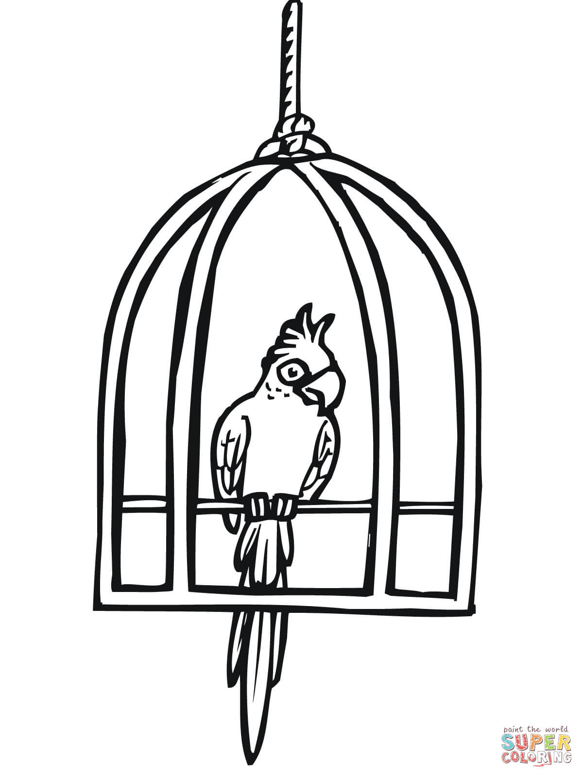 Parrot Pencil Drawing At Getdrawings