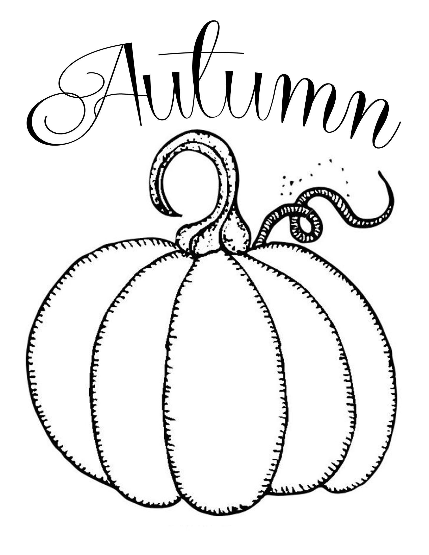 Pumpkin Drawing Template At Getdrawings