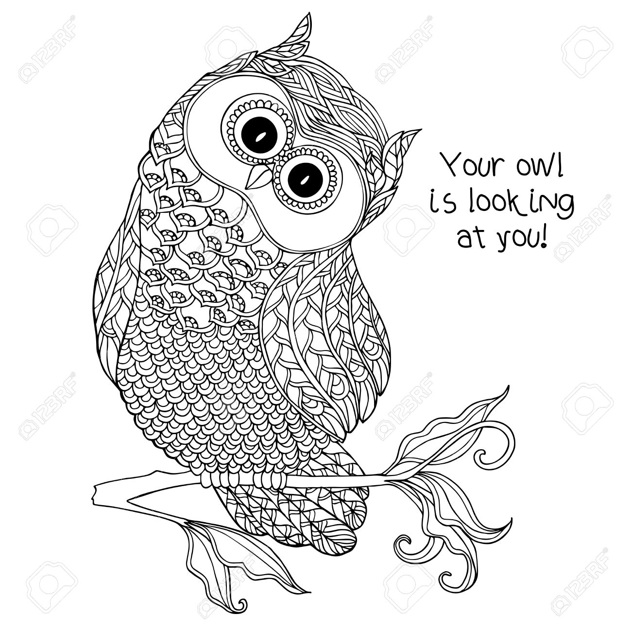 Scary Owl Drawing At Getdrawings