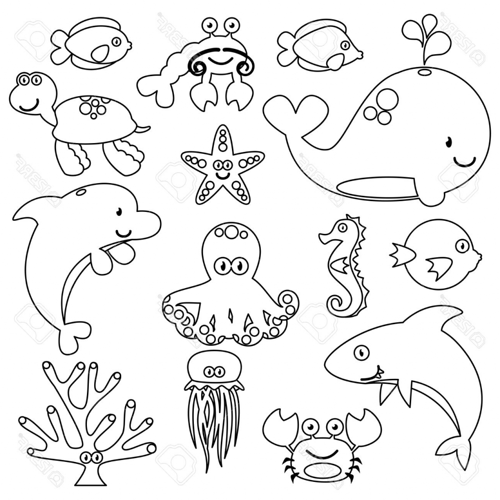 Sea Creatures Drawing At Getdrawings