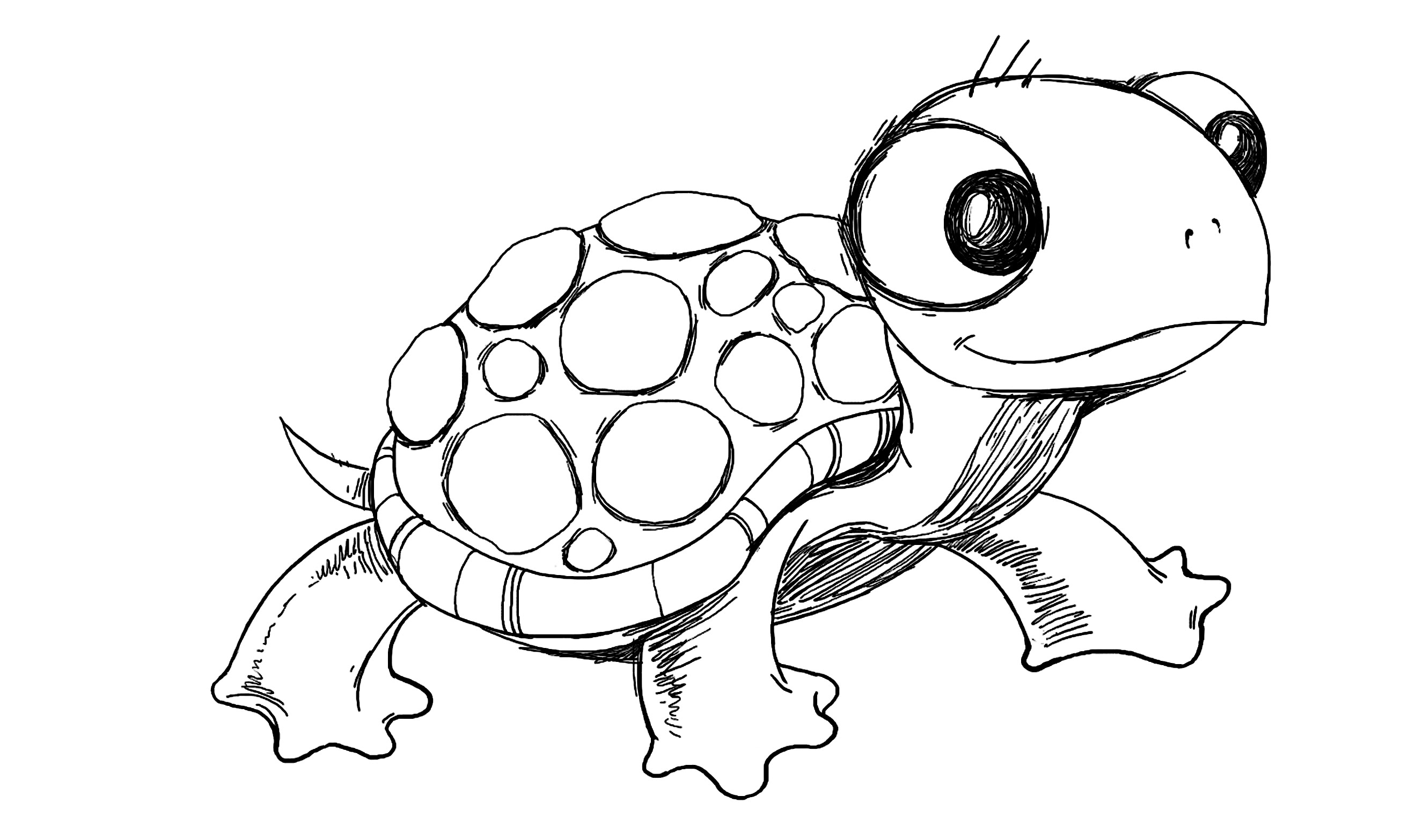Sea Turtle Drawing Tumblr At Getdrawings