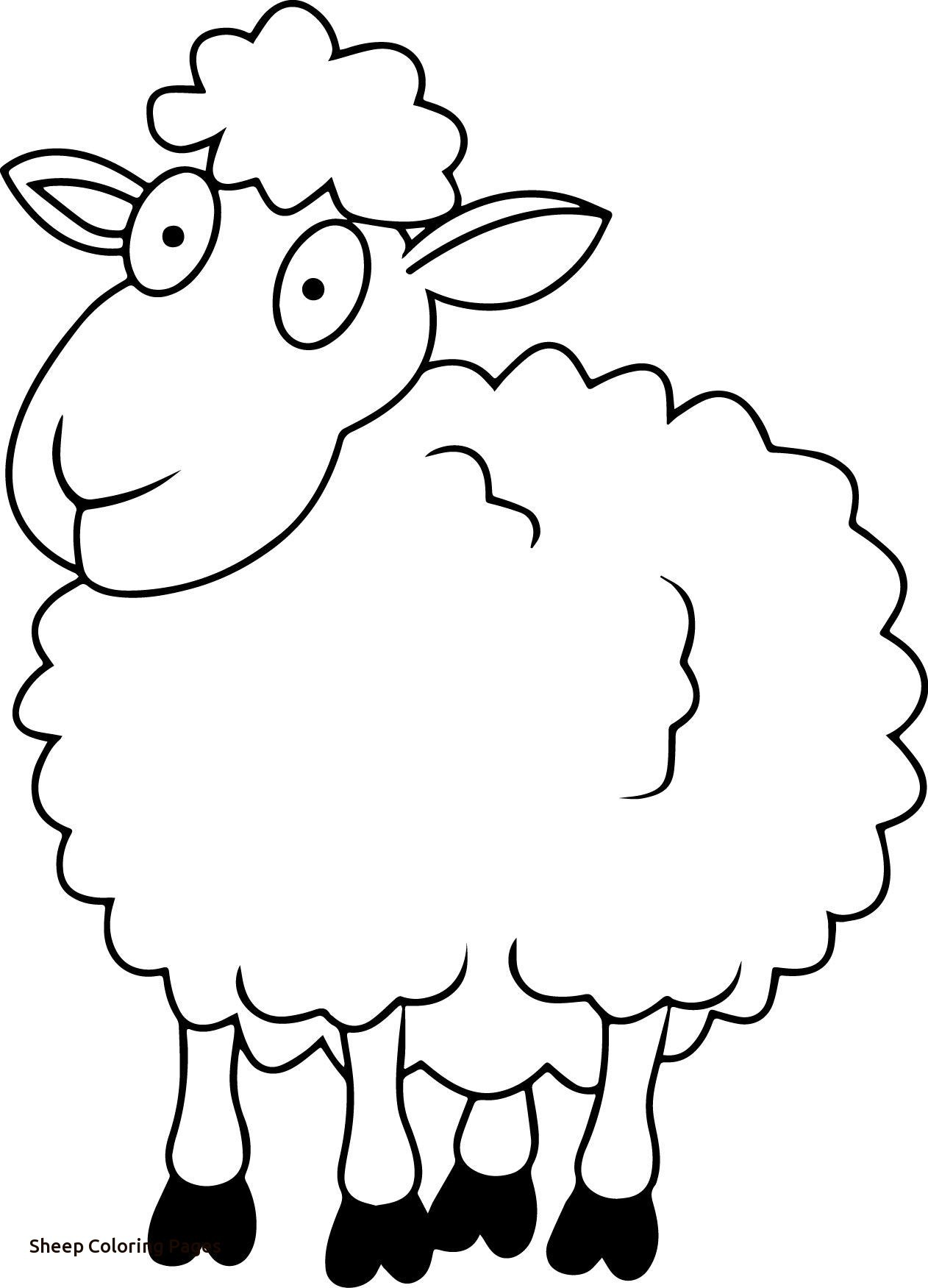 Sheep Outline Drawing At Getdrawings