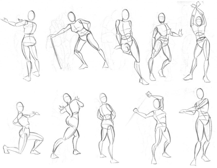 Simple Anatomy Drawing at GetDrawings   Free download