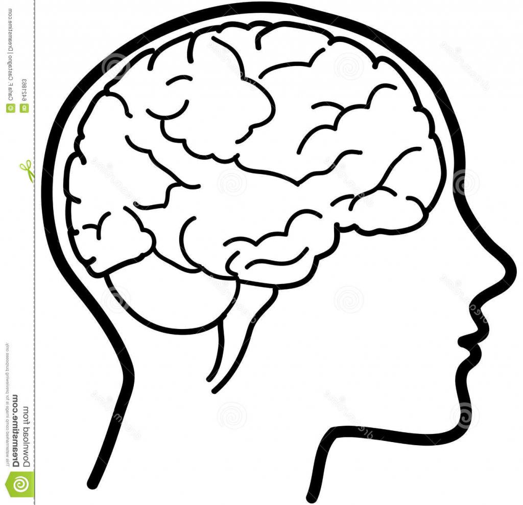 Simple Brain Drawing At Getdrawings
