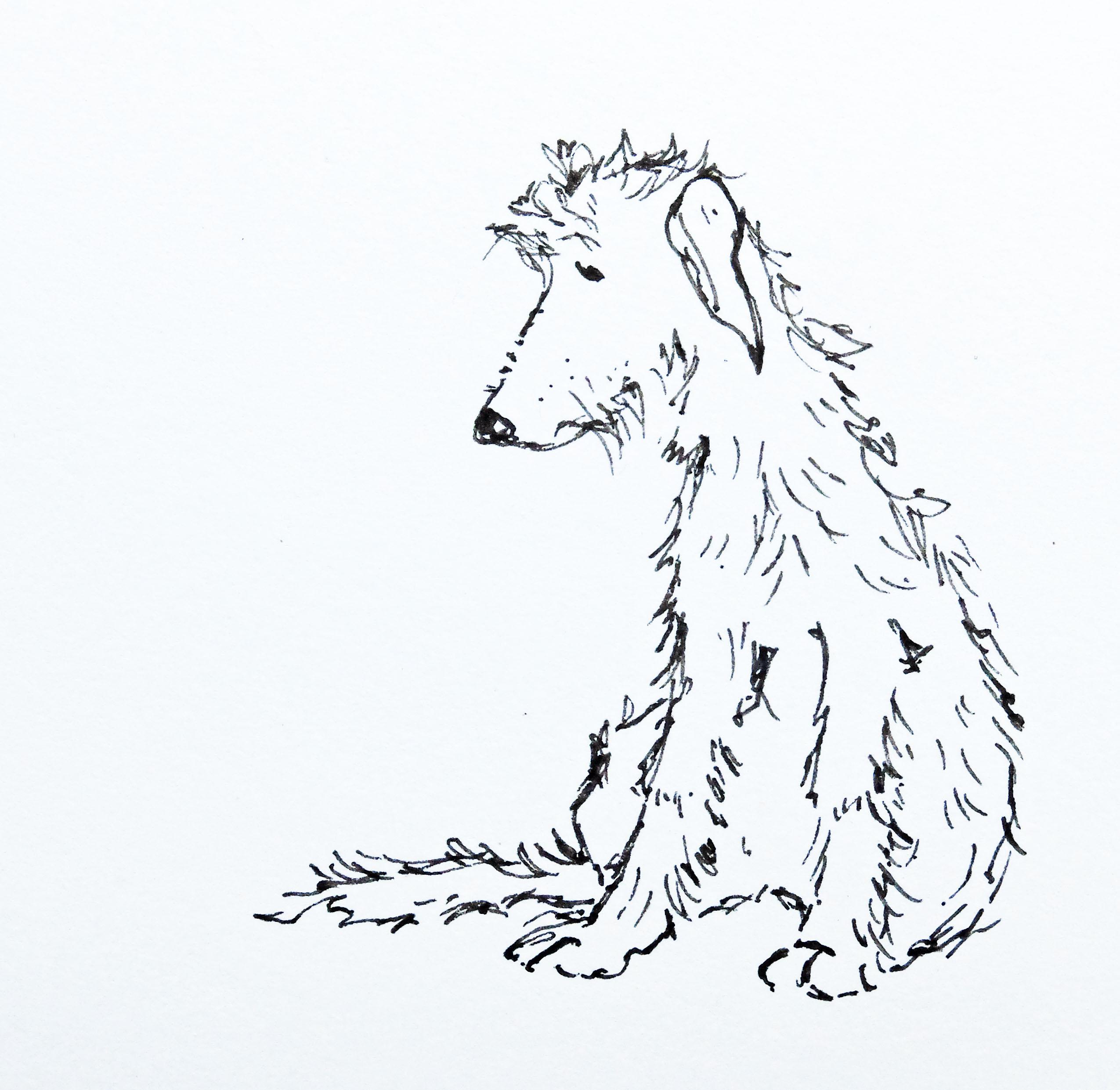 Simple Fern Drawing At Getdrawings