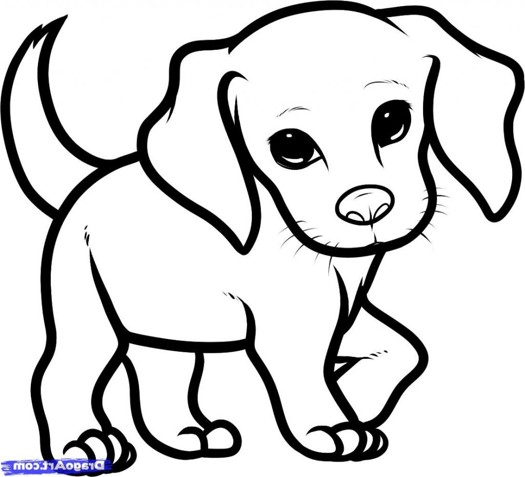 Cute Pug Dog Drawings