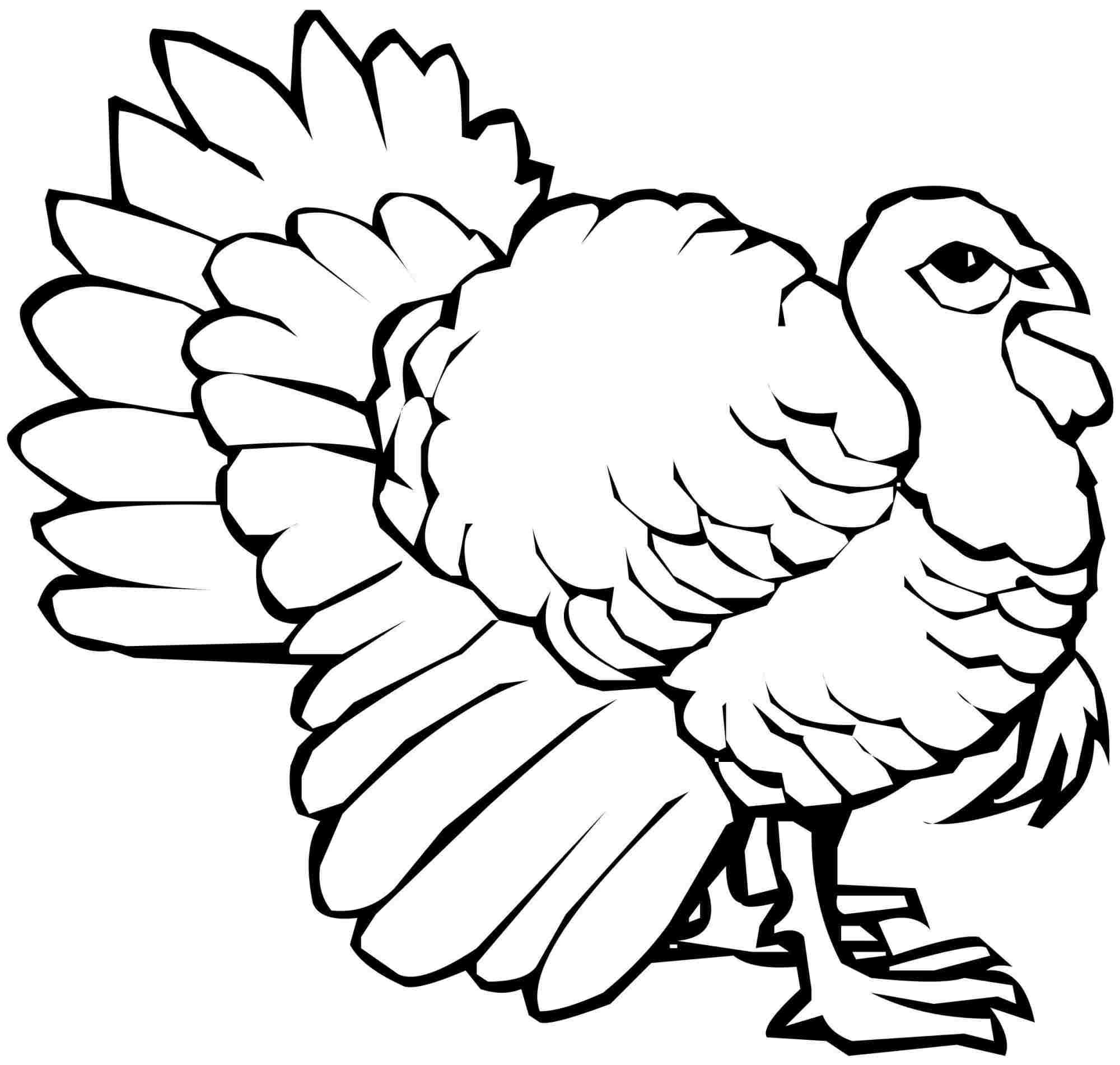 Simple Turkey Drawing At Getdrawings