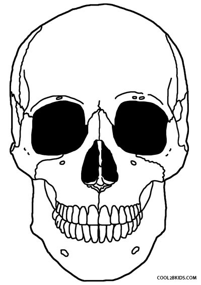skeleton drawing for kids at getdrawings  free download