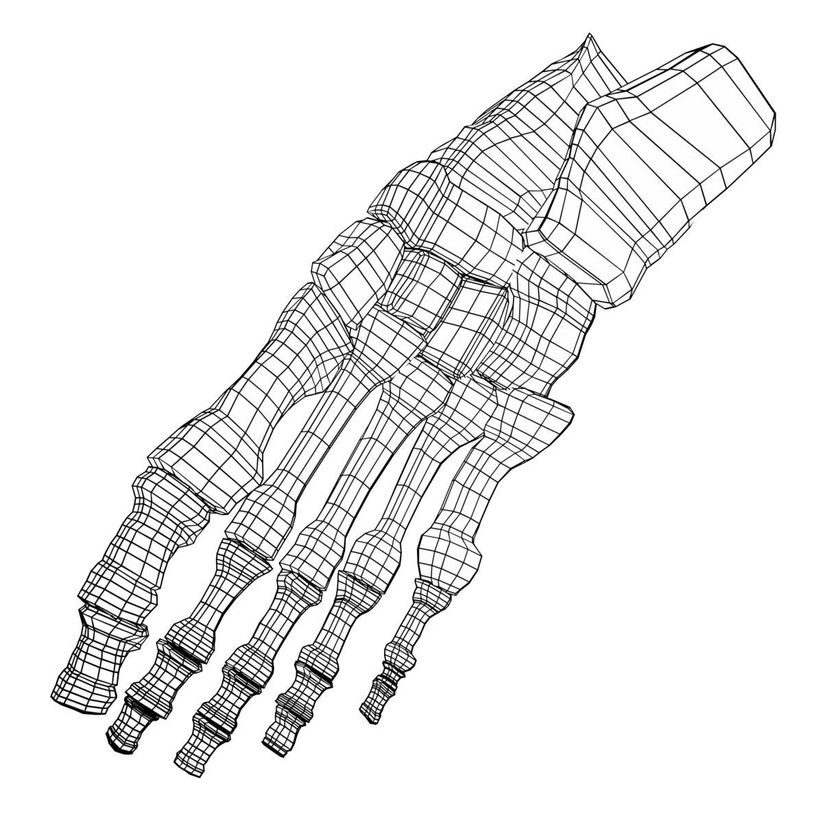 Skeleton Feet Drawing At Getdrawings