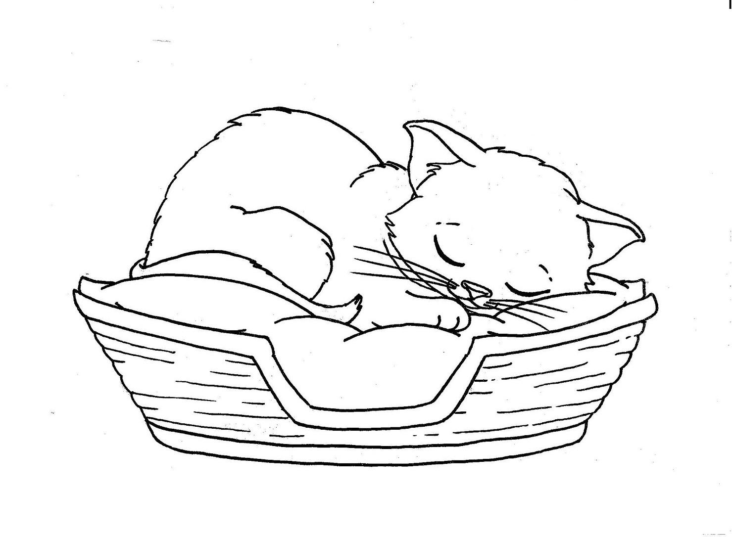 Sleeping Cat Drawing At Getdrawings