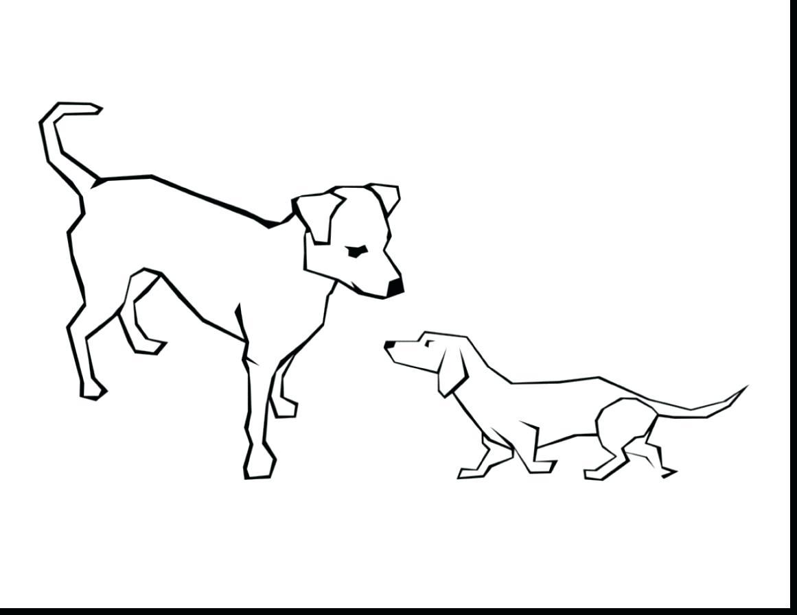 Small Dog Drawing At Getdrawings