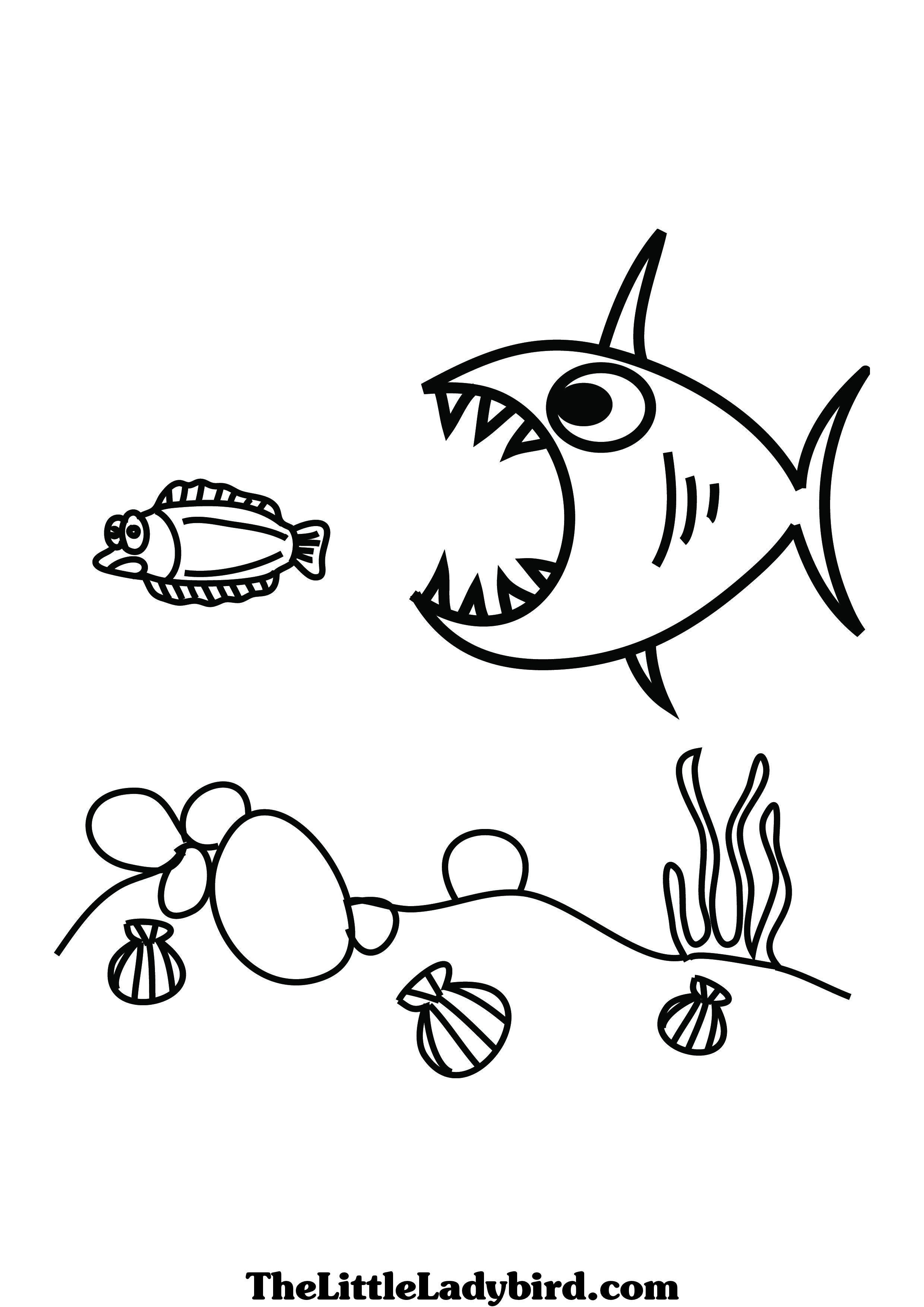 Small Fish Drawing At Getdrawings