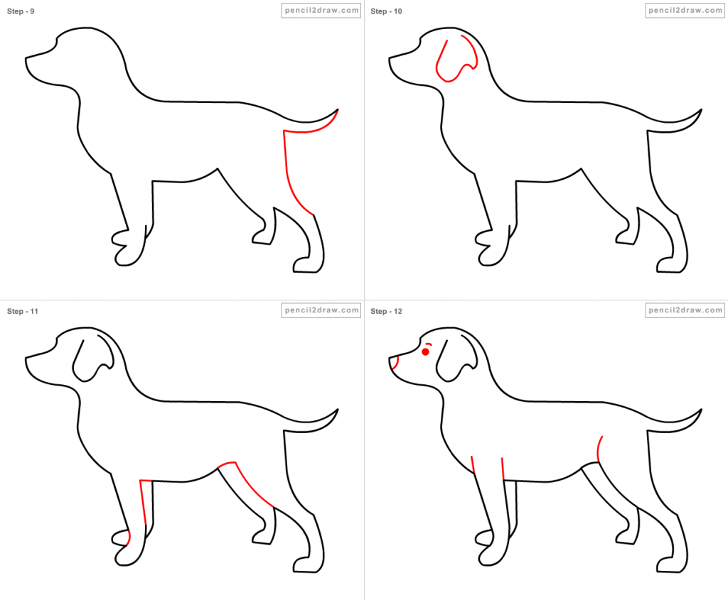 Step By Step Drawing Of A Dog At Getdrawings