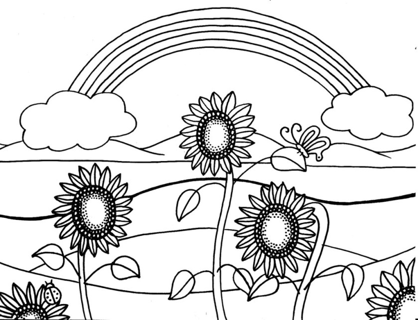 sunflower drawing template at getdrawings  free download