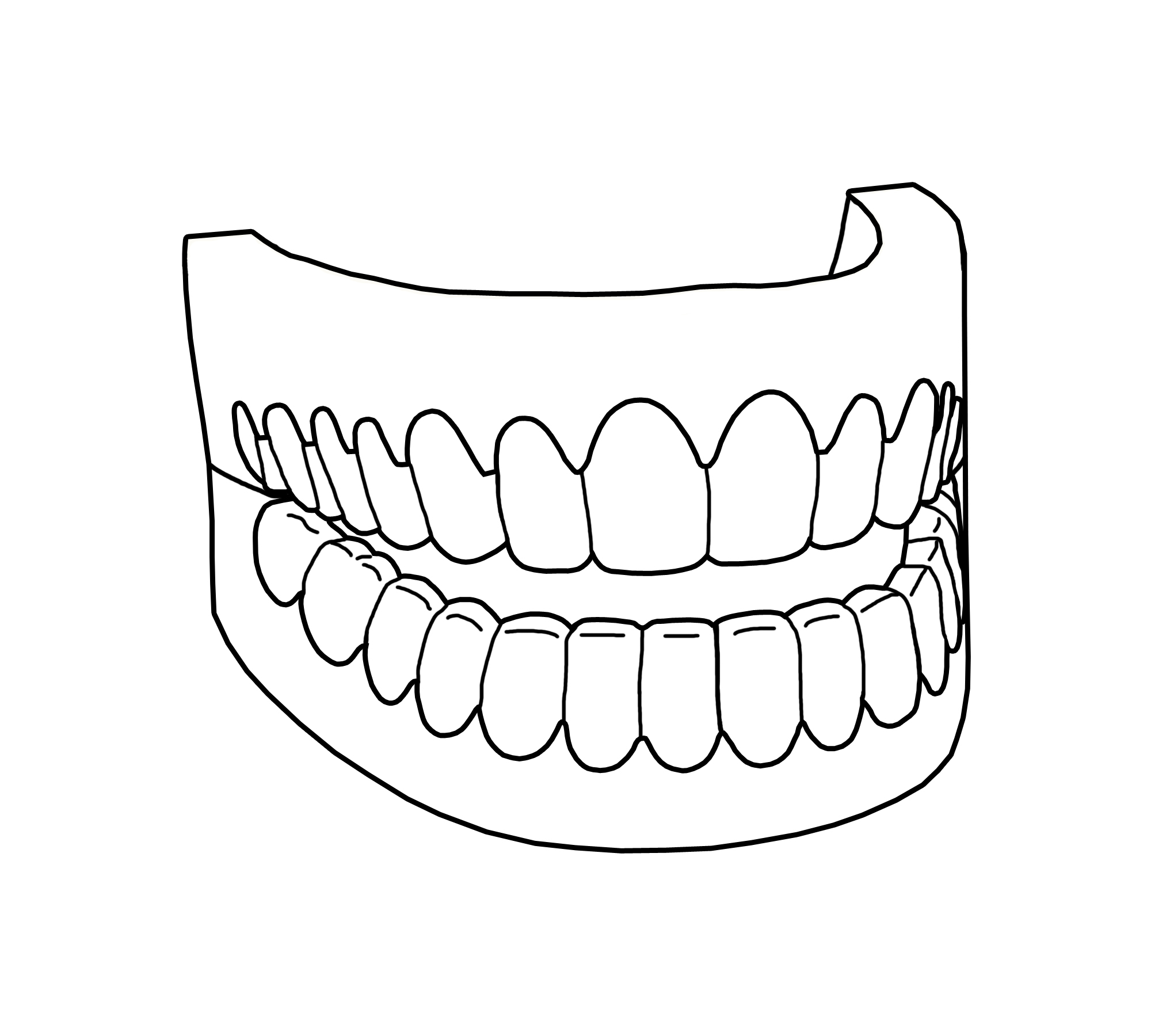 Teeth Drawing At Getdrawings