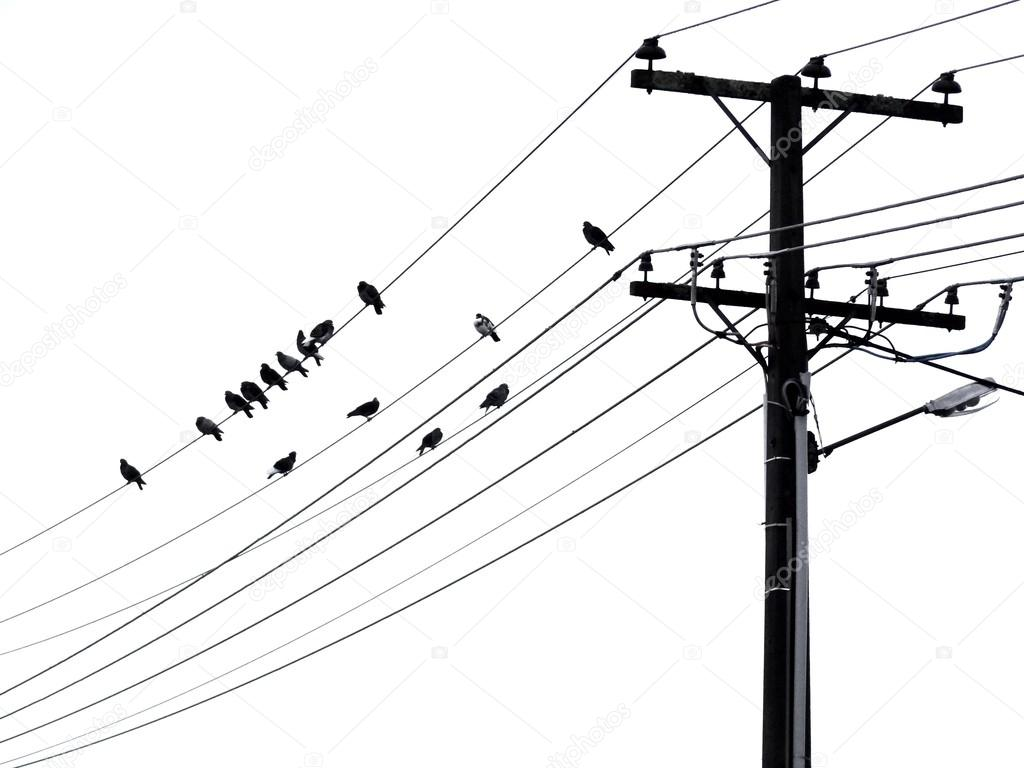 Telephone Line Drawing At Getdrawings