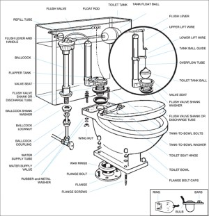 Toilet Bowl Drawing at GetDrawings | Free for personal