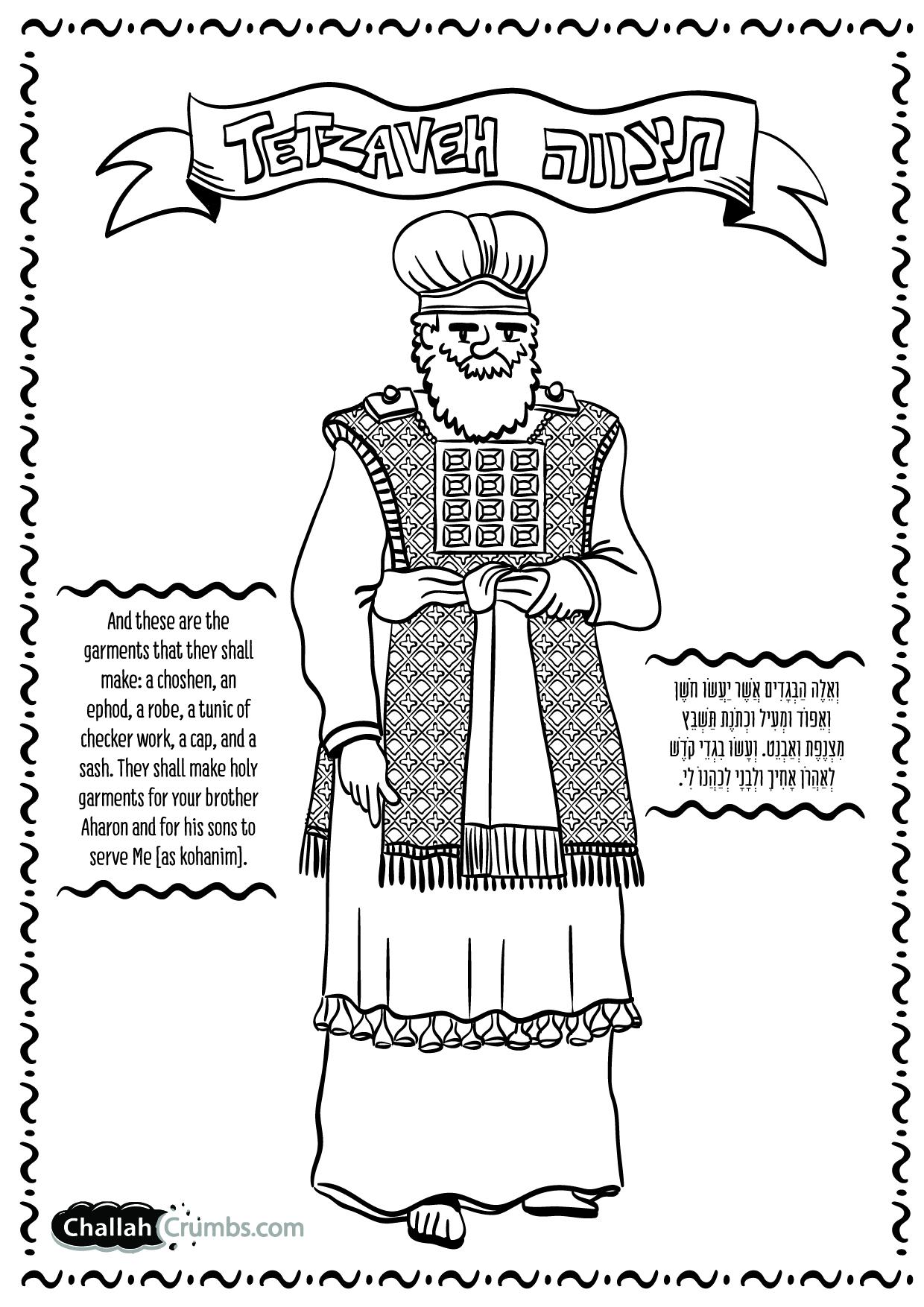 Torah Drawing At Getdrawings