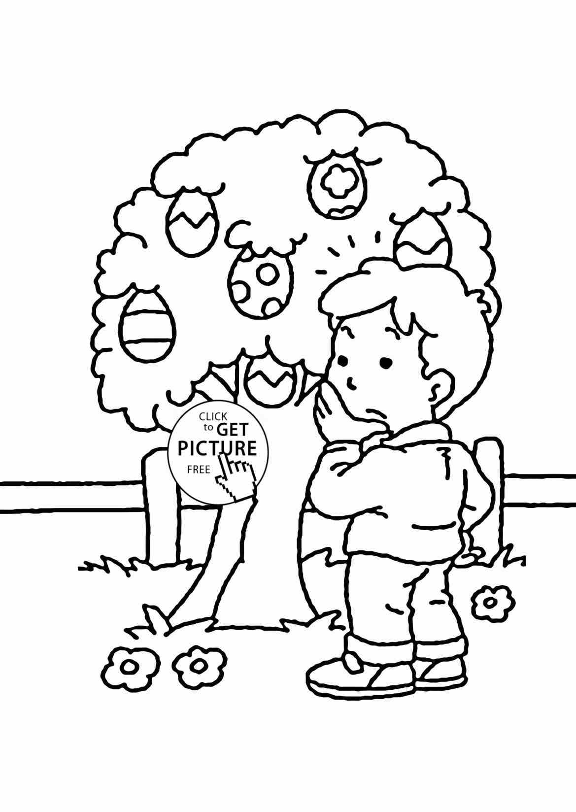Tree Kangaroo Drawing At Getdrawings